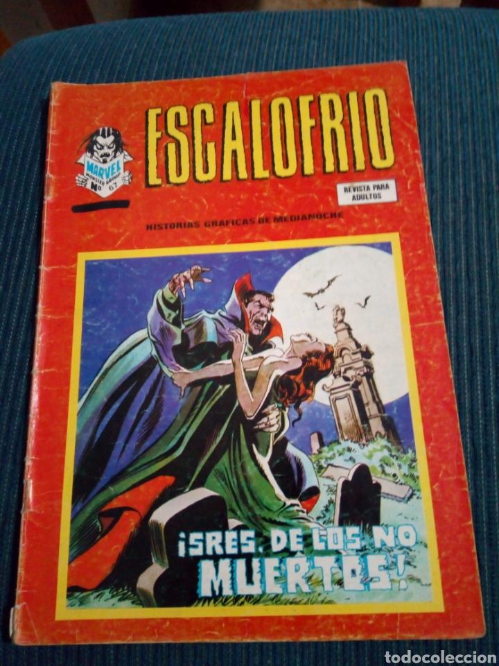 ESCALOFRÍO Nº 67 VERTICE ULTIMO NUMERO (Tebeos y Comics - Vértice - Terror)