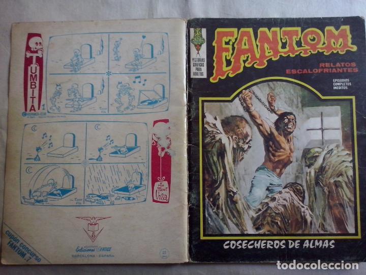 TEBEOS Y COMICS: FANTOM Nº 7 (ABLN) (Tebeos y Comics - Vértice - Terror)