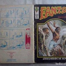 Cómics: TEBEOS Y COMICS: FANTOM Nº 7 (ABLN). Lote 132348610