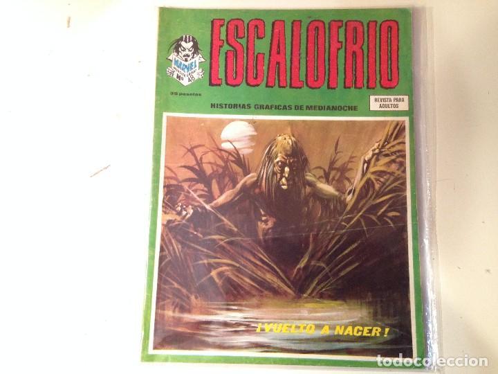 ESCALOFRÍO LOTE 14 EJEMPLARES (Comics und Tebeos - Vértice - Terror)
