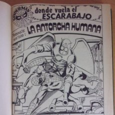 Comics : SPIDERMAN / ENCUADERNADO DEL Nº11 -V3. 1974 AL Nº 20 -V3. 1974. Lote 172219823