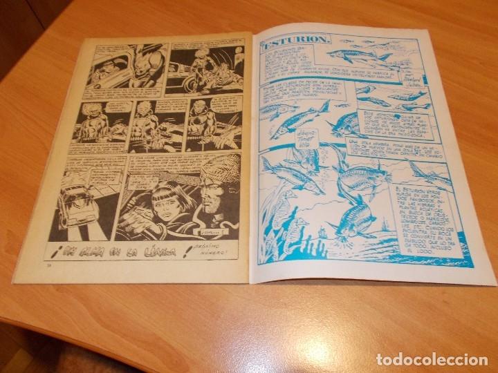 Cómics: EL MOTORISTA FANTASMA. GRAN LOTE DE 26 NÚMEROS !! - Foto 76 - 172954704