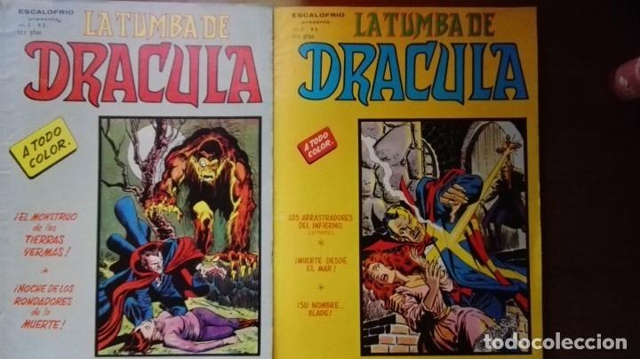 LA TUMBA DE DRACULA VOL2 NºS 3 Y 4 (Tebeos y Comics - Vértice - Terror)