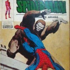 Cómics: SPIDERMAN Nº 49 VÉRTICE TACO. Lote 178400465