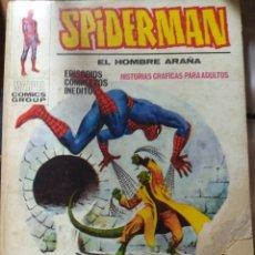Cómics: SPIDERMAN Nº 17 VERTICE TACO. Lote 179125431