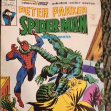 Cómics: SPIDERMAN PETER PARKER V1 NUMERO 17. Lote 194900277