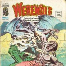 Cómics: WEREWOLF VOL.2 Nº 12 - VÉRTICE. EL HOMBRE LOBO.. Lote 198715167