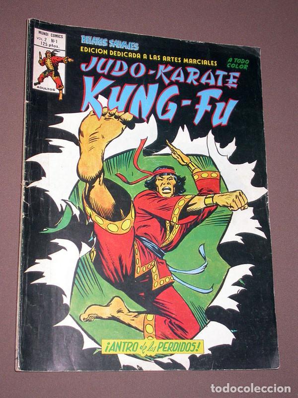 RELATOS SALVAJES VOL. 2 Nº 1. JUDO-KARATE KUNG-FU. VÉRTICE, 1981. ENGLEHART, STARLIN, GULACY. (Tebeos y Comics - Vértice - Relatos Salvajes)