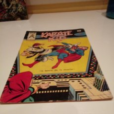 Cómics: KARATE KID. NÚMERO 6. CON SUPERMAN Y LA LEGIÓN DE SUPERHÉROES COMICS ART. EDICIONES VERTICE.. Lote 240711985