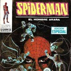 Cómics: SPIDERMAN EL HOMBRE ARAÑA VERTICE VOL. 1 Nº 10 : LA LOCURA DE SPIDERMAN. Lote 244806945