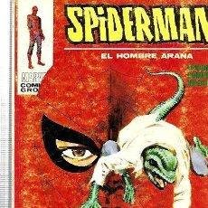 Cómics: SPIDERMAN EL HOMBRE ARAÑA VERTICE VOL. 1 Nº 32 : EL LAGARTO AUN VIVE. Lote 244807575