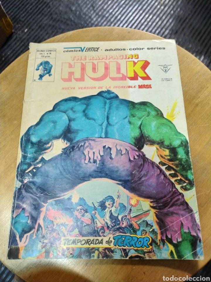 THE RAMPAGING HULK VOL 1 N° 14 (VÉRTICE) (Tebeos y Comics - Vértice - La Masa)