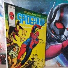 Cómics: EXCELENTE ESTADO SPIDERMAN 13 ANTOLOGÍA DEL CÓMIC MUNDI CÓMICS VERTICE. Lote 261214655