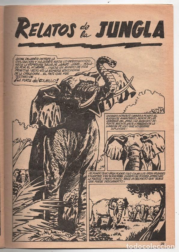 Cómics: 1979 MUNDI COMICS V1#11 LOS DEFENSORES LA MASA STRANGE NAMOR SILVER SURFER LEE JACK KIRBY ROY THOMAS - Foto 7 - 263166095