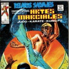 Cómics: RELATOS SALVAJES - ARTES MARCIALES VOL. 1 - Nº 17 - MATADOR DE ALMAS ''BUEN ESTADO''. Lote 268845119