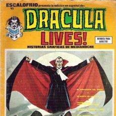 Cómics: ESCALOFRÍO-VÉRTICE- Nº 15 -DRACULA LIVES!-1974-VICENTE ALCÁZAR-MIKE PLOOG-BUENO-DIFÍCIL-LEA-5648. Lote 291996773