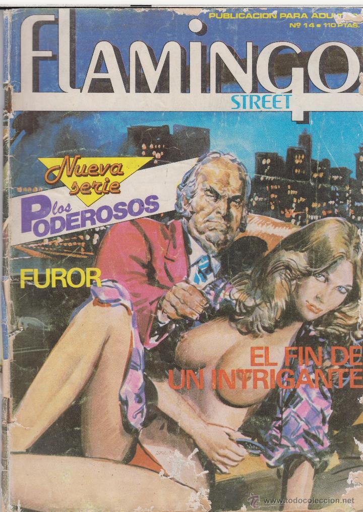 COMIC ADULTOS -FLAMINGO STREET Nº 14 ED. ZINCO 1984 (Tebeos y Comics - Zinco - Otros)