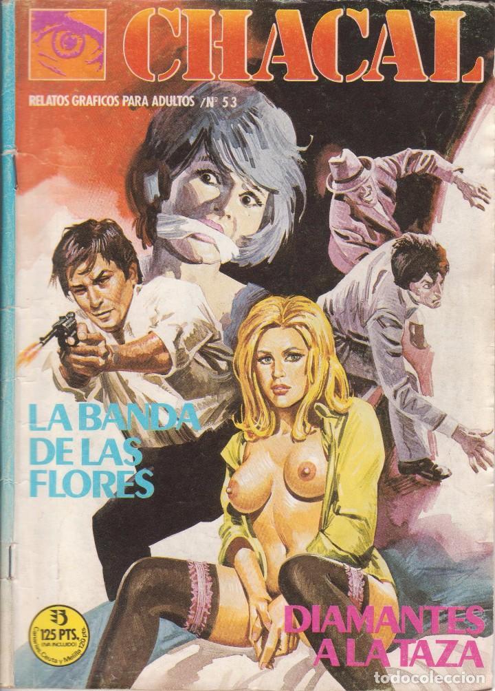 COMIC ADULTOS - CHACAL - Nº 53 ED. ZINCO 1984 (Tebeos y Comics - Zinco - Otros)