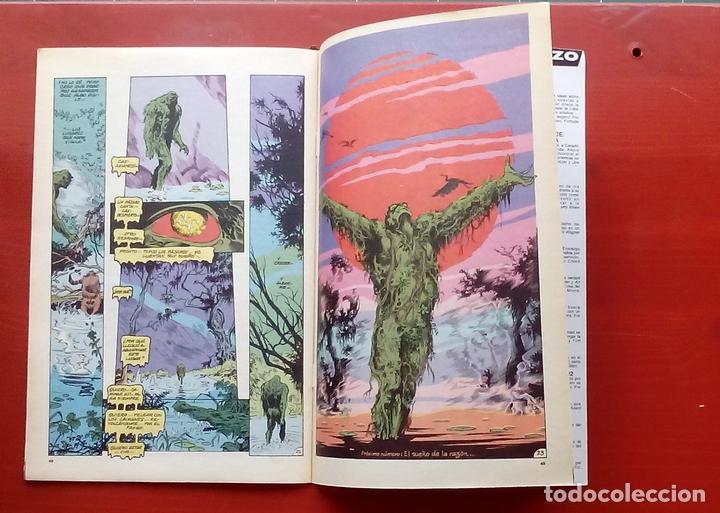 Cómics: Clasicos DC 25: Demon 3 y Cosa del Pantano 24 por Matt Wagner, Alan Moore, Bissette-Zinco (1987) - Foto 9 - 83589196