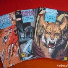 Cómics: ANIMAL MAN CARNE Y SANGRE 1 AL 3 COMPLETA ( DELANO PUGH ) ¡MUY BUEN ESTADO! ZINCO DC VERTIGO. Lote 89039528