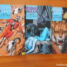 Cómics: ANIMAL MAN - CARNE Y SANGRE - COMPLETA - LIBRO UNO, DOS Y TRES , 1,2, Y 3 - JAMIE DELANO (8D). Lote 105844743