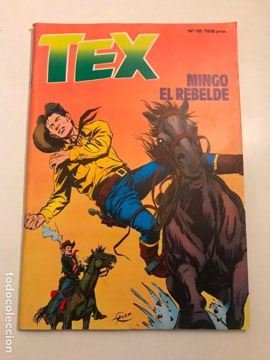 Cómics: COLECCION COMPLETA DE 13 NUMEROS A FALTA DE 1. TEX. ZINCO 1983 - Foto 12 - 116965379