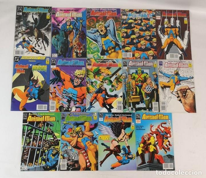 Cómics: EXCEPCIONAL COLECCIÓN DE CLÁSICOS DC. 197 COMICS. EDICIONES ZINCO. 1985/1994. - Foto 6 - 126973463