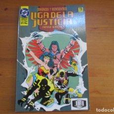 Comics - Liga de la Justicia América. Comienzos y reencuentros. Volumen Especial. Dan Jurgens. Zinco - 134504134