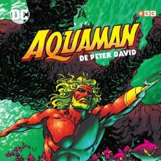 Cómics: AQUAMAN DE PETER DAVID 2 - ECC / DC / TAPA DURA / NUEVO DE EDITORIAL. Lote 188521846