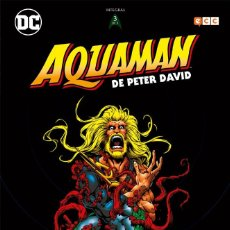 Cómics: AQUAMAN DE PETER DAVID 3 - ECC / DC / TAPA DURA / NUEVO DE EDITORIAL. Lote 188522028