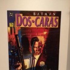 Cómics: BATMAN DOS CARAS - EDICIONES ZINCO - DEMATTEIS / MCDANIEL - TOMO PRESTIGE. Lote 190522038