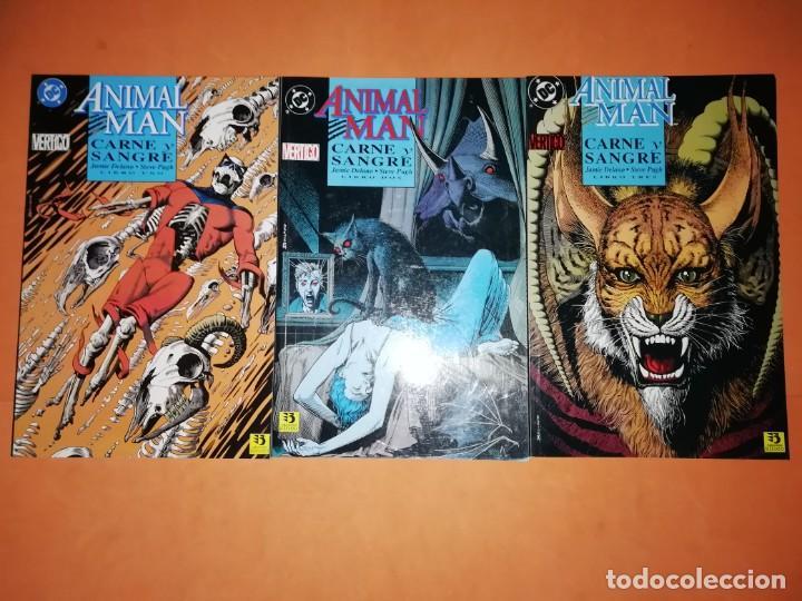 ANIMAL MAN. CARNE Y SANGRE.TRES TOMOS . COMPLETA. RUSTICA. EDICIONES ZINCO. LINEA VERTIGO. (Tebeos y Comics - Zinco - Otros)