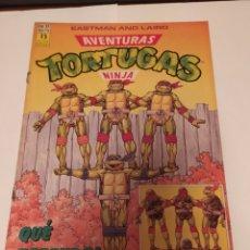 Cómics: COMIC AVENTURAS TORTUGAS NINJA N'33, 150PTS. Lote 198481425