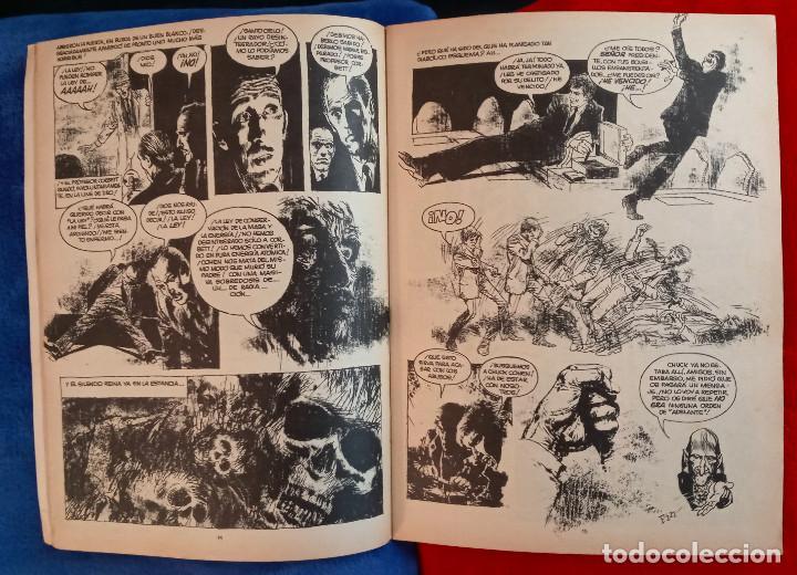 Cómics: VAMPUS 23 Y VAMPUS 66 - INCLUYEN POSTER LOS DOS - Foto 4 - 230184105