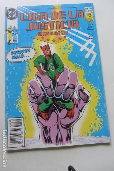 LIGA DE LA JUSTICIA AMÉRICA Nº 30 ED ZINCO MUCHOS EN VENTA PIDE FALTAS ARX2 (Tebeos y Comics - Zinco - Liga de la Justicia)