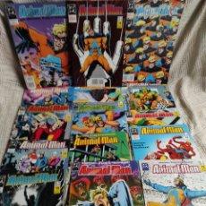 Cómics: ANIMAL MAN NUMEROS LOTE 15 EJEMPLARES 1,2,3,4,5,6,7,8,9,10,11,12,13, 16 Y 24 EDICIONES ZINCO. Lote 47822320