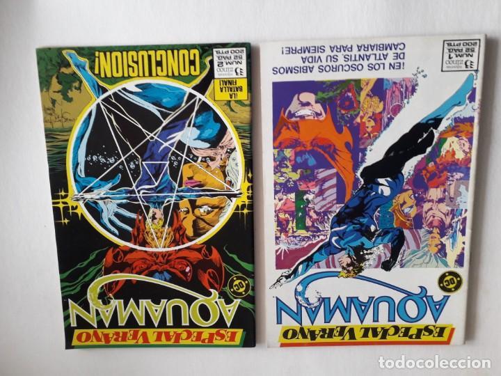 AQUAMAN COMPLETA EN 2 ESPECIALES EDICIONES ZINCO ESPECIALES DE 52 PAGINAS CADA UNO (Tebeos y Comics - Zinco - Otros)