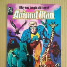 Cómics: ANIMAL MAN N°1 (ZINCO, 1989). POR GRANT MORRISON Y CHAS TRUOG. ¡HAY UNA JUNGLA AHÍ FUERA!. Lote 277056758