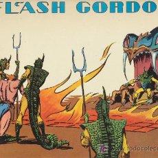 Cómics: FLASH GORDON. VOLUMEN 1. EDICIONES B.O.. Lote 20837422