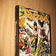 Cómics: TARZAN OF THE APES - HOGARTH - ED. HAMLIN 1973 - EN INGLÉS. Lote 25537902