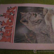 Cómics: PANDILLA, ADENA VVJ, REVISTA PANDA N 44 , 1993. Lote 32602808