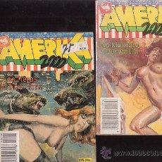 Cómics: AMERIKA 2000 ( NOVELA GRAFICA EROTICA ) LOTE DE 2 EJEMPLARES. Lote 32812762