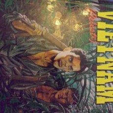 Cómics: VIETNAN (CELESTE ) EDITORIAL IRU TAPAS DURAS. Lote 34580745