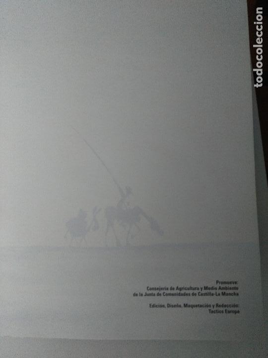 Cómics: La ruta de Don Quijote y Sancho por los alimentos de Castilla-La Mancha - Foto 3 - 123034951