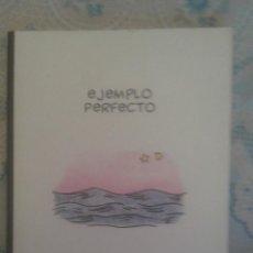 Cómics: EJEMPLO PERFECTO: JOHN PORCELLINO: PONENT MON. Lote 128393047