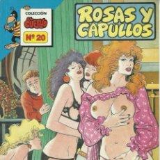 Cómics: COLECCION EL CUERVO N 20 TAPA BLANDA. Lote 139381554