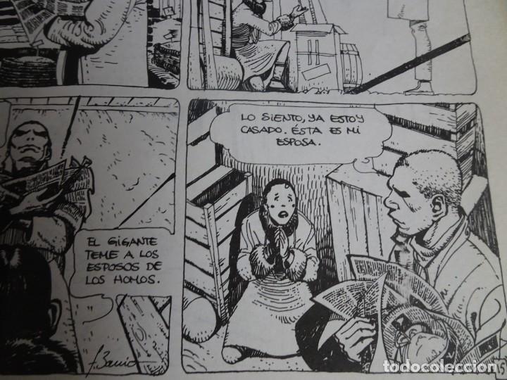 Cómics: LOTE DE 5 COMICS,TOTEM, VER FOTOS - Foto 18 - 155133794