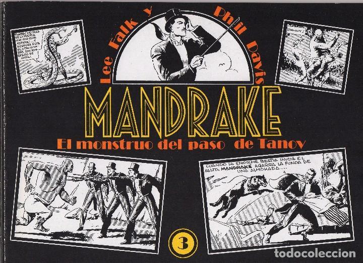 Cómics: MANDRAKE por Lee Falk y Phil Davis 14 números publicados por Joaquin Esteve a partir de 1.980 - Foto 3 - 159259890
