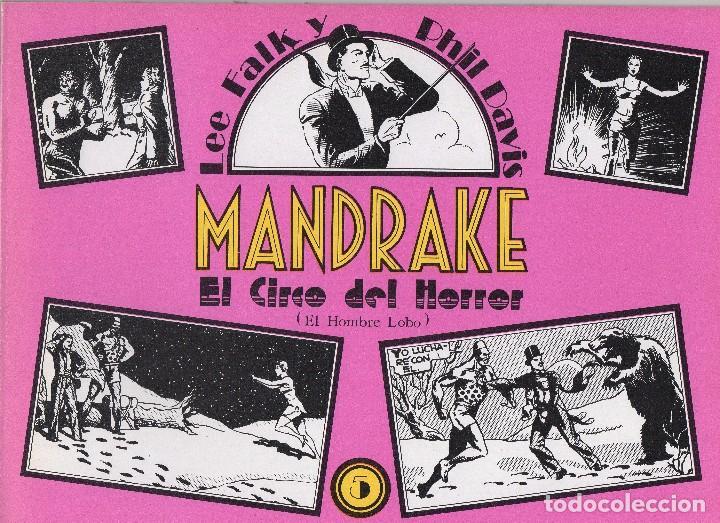 Cómics: MANDRAKE por Lee Falk y Phil Davis 14 números publicados por Joaquin Esteve a partir de 1.980 - Foto 5 - 159259890