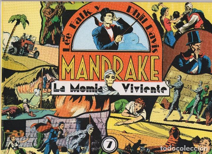 Cómics: MANDRAKE por Lee Falk y Phil Davis 14 números publicados por Joaquin Esteve a partir de 1.980 - Foto 7 - 159259890